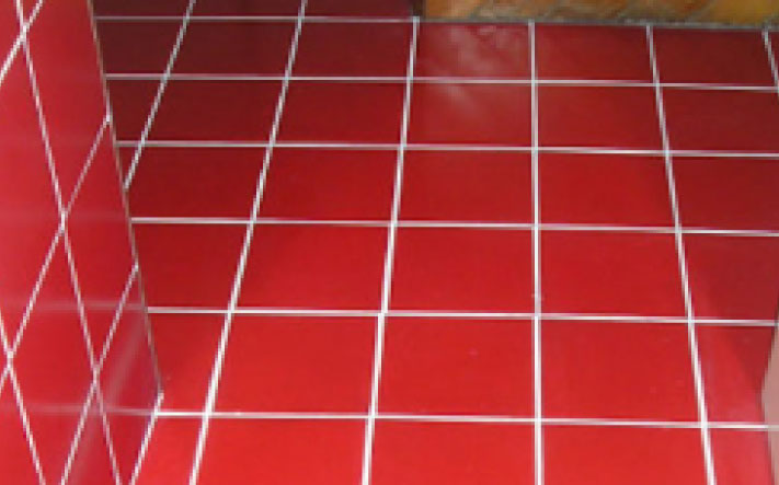 Canny Case Studies Red Clean Tiles and Clean Grout